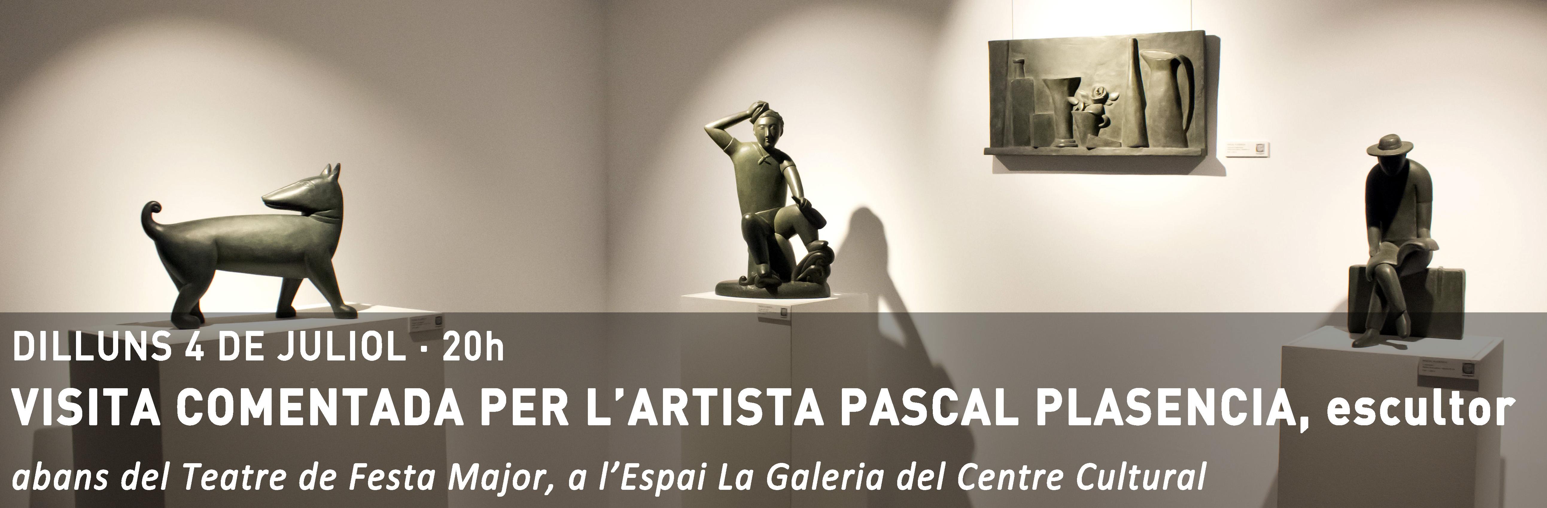 http://www.fundacioct.cat/exposicio/pascal-plasencia-escultura/